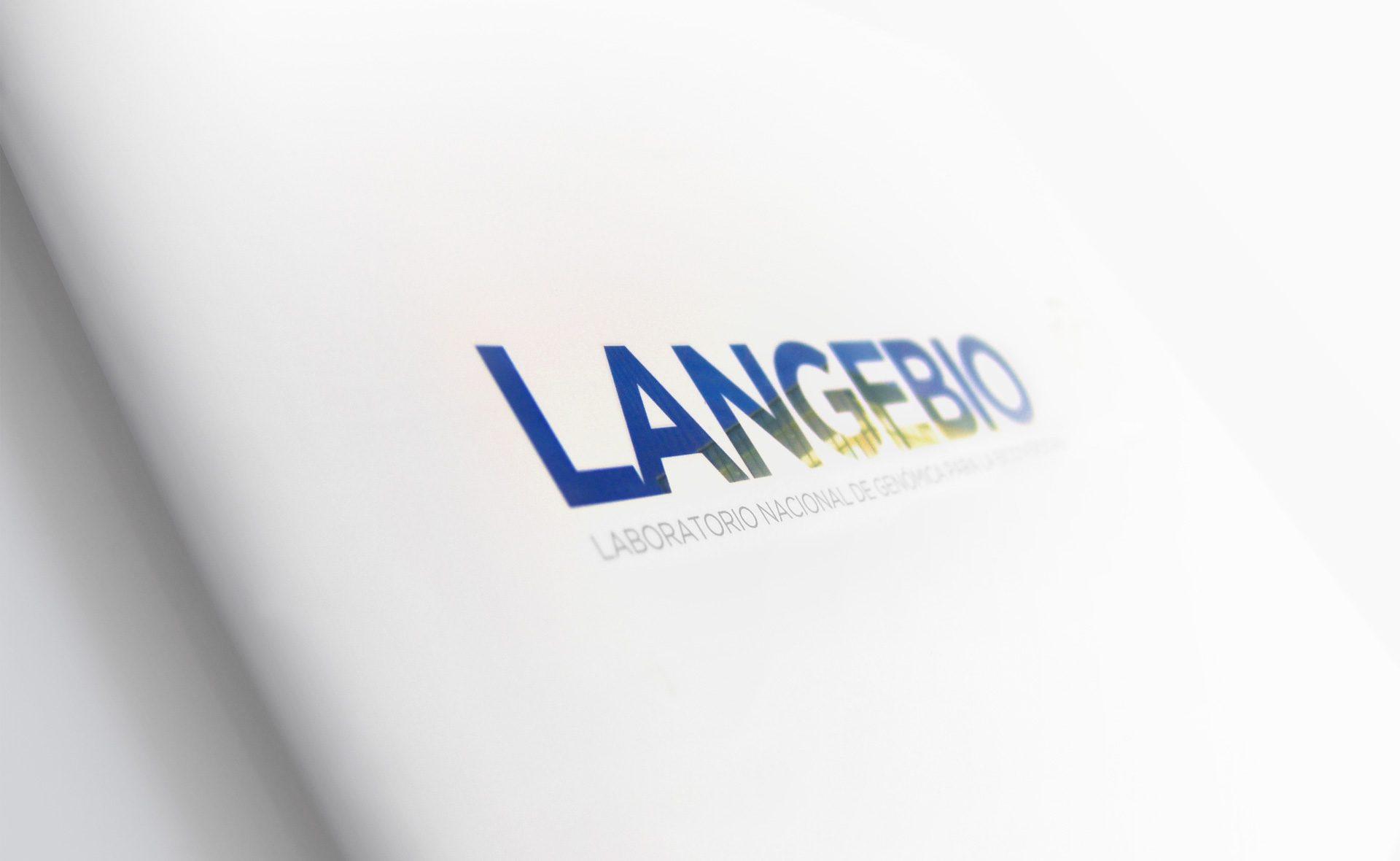 04_lan_identidad_corporativa_marca_logo_guadalajara_branding_buro3_agencia_publicidad